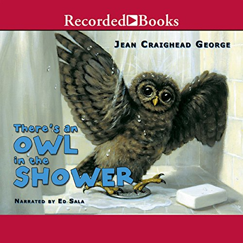 There's an Owl in the Shower audiobook cover art