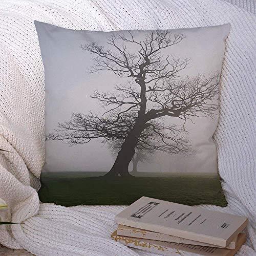 N\A Dekorative Kissenbezüge für Schlafsofa Couch Blue Day Herbst Old Oak Tree Englisch Misty Meadow Natur Landwirtschaftsparks Grün Schöne britische weiche Kissenbezug