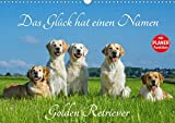 Das Glück hat einen Namen - Golden Retriever (Wandkalender 2020 DIN A3 quer): Eine der wohl schönsten und beliebtesten Hunderassen auf 13 wundervollen ... 14 Seiten ) (CALVENDO Tiere)