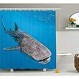 ZSYNB Tapisserie Meerestiere Dekor Duschvorhang Set Walhai Schwimmen Raubtiere Jäger Klares Wasser unter dem Meer Bad Gardinen