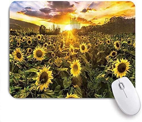 Gaming Mouse Pad rutschfeste Gummibasis, Sunflower Gloden Sunset Sunflowers Pflanzen Feld an bewölkten Abend Naturlandschaft, für Computer Laptop Office Desk