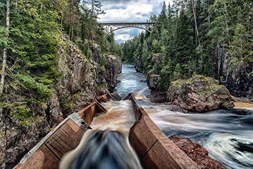 PThome05 - Puente de exposición larga para árbol de río, para adultos, 500 piezas de rompecabezas para adultos y adolescentes