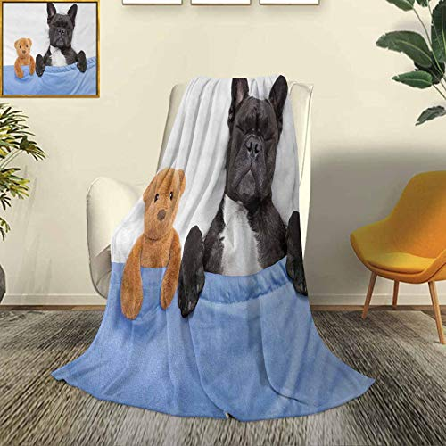 Animal Soft Plush Warm Blanket Suitable for All Seasons French-Bulldog-Sleeping-with-Teddy-Bear-in-Cozy-Bed-Best-Friends-Fun-Dreams-Image Luxury air-Conditioning Duvet Cover W80 x L60 Inch Multicolor