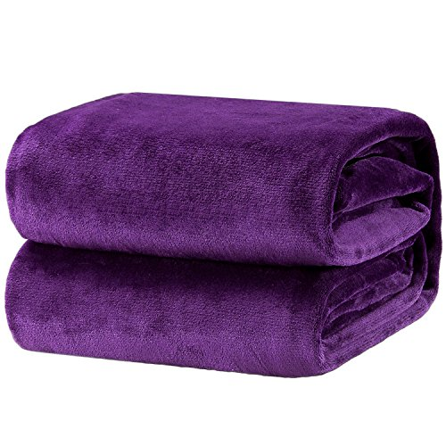 Bedsure Fleece Blanket Throw Size Purple Lightweight Super Soft Cozy Luxury Bed Blanket Microfiber