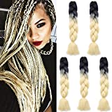 SEGO Meche Pour Tresses Africaine Tressage Rajout Extension Cheveux Fibre Synthetique Box Crochet Braids 5 Pcs (2 Couleurs 500g) - 24 Pouces Noir+Blan Miel