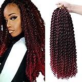 6 Packs/Lot Passion Twist Crochet Tresses De Cheveux 20 Pouces Vague D'eau Crochet Cheveux Passion Twist Crochet Synthétique Tressage Extensions (noir/vin rouge)