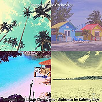 Sparkling West Indian Steel Drums - Ambiance for Calming Days