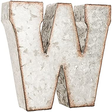 Galvanized Metal 3D Letter W