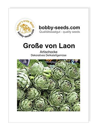 Bobby-Seeds Artischockensamen Große von Laon Portion