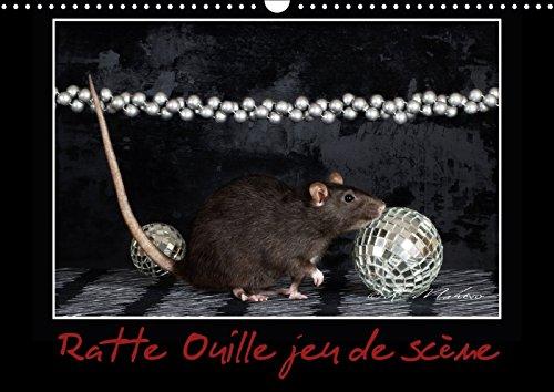 Ratte Ouille jeu de scène (Calendrier mural 2018 DIN A3 horizontal): Petite ratte en spectacle. (Calendrier mensuel, 14 Pages ) (Calvendo Animaux) [Kalender] [Apr 04, 2017] Mahevo, Kathy