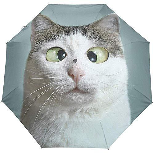 Cute Novelty Cat Auto Open Close Umbrellas Anti UV Folding Compact Automatic Umbrella