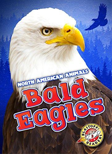 Bald Eagles (Blastoff! Readers: North American Animals) (North American Animals: Blastoff Readers, Level 3)