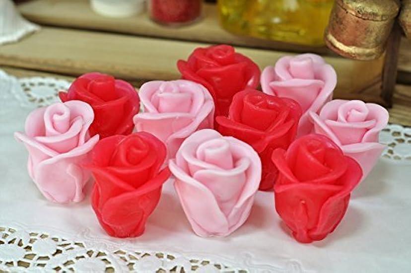 疑問を超えて戦艦塩辛いPerfect gift - Rose - Set of Two Red & Pink Bud of Rose Handmade Premium Soap ? Face and Body moisturizing natural soap ? Fresh Rose scent ? Coconut oil and vitamin E [並行輸入品]