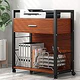 Tribesigns Soporte para impresora móvil, moderno armario de archivos laterales, mesa auxiliar para ordenador, soporte para máquina de carritos con 4 ruedas y cajón de almacenamiento para oficina en casa, marco de metal