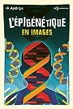 L'épigénétique en images (Aperçu) - Format Kindle - 9782759822454 - 5,99 €
