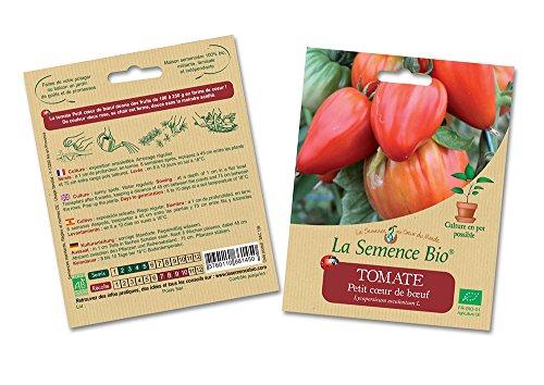 La semence BIO Graines de Tomate Petit Coeur de Boeuf Bio