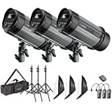 Neewer 900W Studio Strobe Flash Photography Lighting Kit:(3) 300W Monolight,(3) Softbox,(3) Light Stand,(1) RT-16...