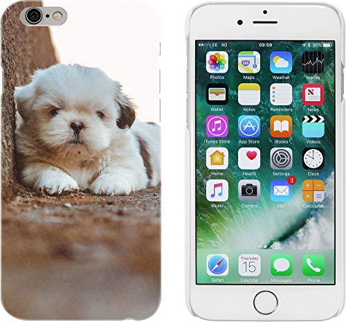 Azeeda Blanco 'Cachorro shih tzu' Funda para iPhone 6 y 6s (MC00003938)