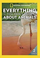 Everything You Didn't Know About Animals [DVD] [Import]