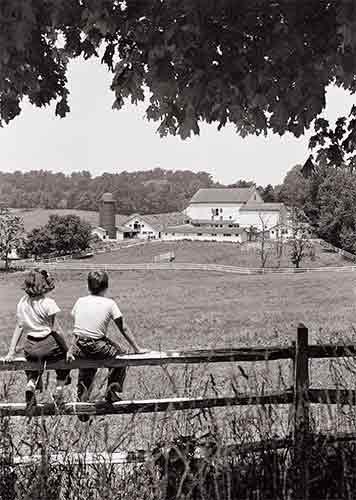 Avanti Press Historic America Blank Notecards, Family Farm, 10-Count - 32046