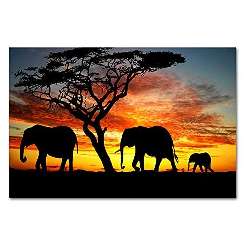 Bilder på duk afrikanska slätter solnedgång elefant tryck målning djur affischer väggkonst för vardagsrum hus dekorativ 35 x 50 cm (14 x 20 tum) oramad