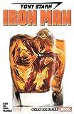 Slott, D: Tony Stark: Iron Man Vol. 2 - Stark Realities