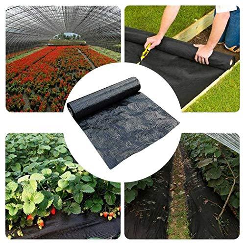 Toile de Paillage Contre les Mauvais Herbes en Tissées Anti-UV 100g/m2 Membrane de Lutte Résistant Aux Déchirures avec Haute Stabilisation 1Mx10M 2Mx10M 2Mx5M Bâche de Paillage ( Size : 2m*5m )