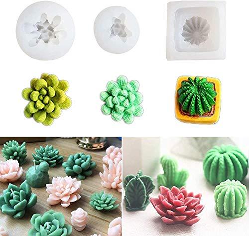 boogift 3 Stück Kaktus 3D Silikon Form Fondant Kuchen Form Mehrere Kaktus Schokolade Gelee Süßigkeiten Backen Formen für Valentinstag Geburtstagsfeier Hochzeit Spa Home Decoration