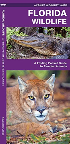 Florida Wildlife: A Folding Pocket Guide to Familiar Animals (Wildlife and Nature Identification)
