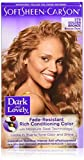 Dark and Lovely Fade Resistant Rich Conditioning Color [379], Golden Bronze, 1 ea (Pack of 5)