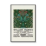 Impresiones de flores y póster de William Morris, póster de exposición, arte de pared, sala de estar moderna, pintura en lienzo sin marco D 70x100cm