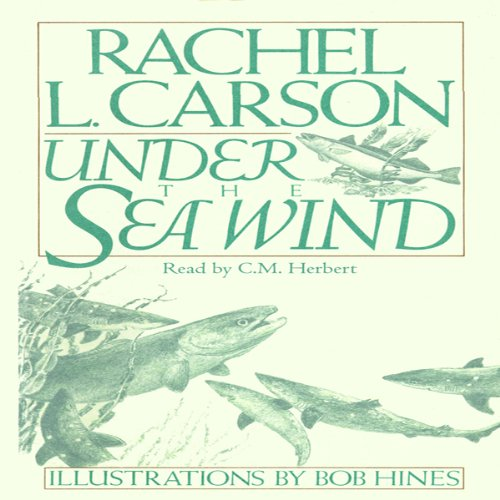 Under the Sea Wind audiobook cover art