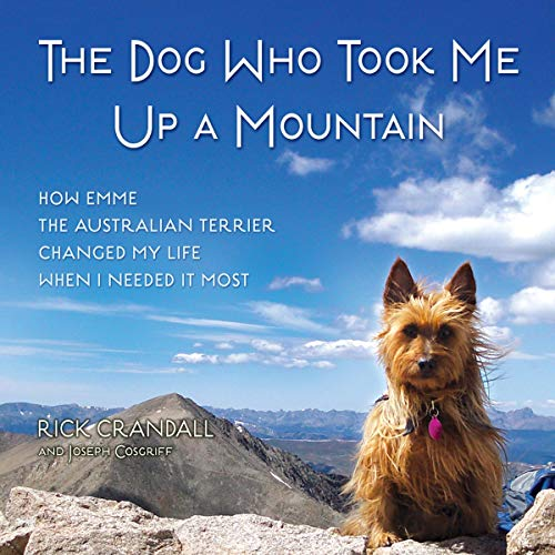 The Dog Who Took Me Up a Mountain cover art