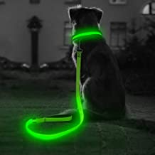 BSEEN LED Dog Collar, LED Dog Leash, USB Rechargeable Glowing Safety Dog Collar Light Up Adjustable Nylon Webbing Reflective Pet Dog Collar Leash for Dog & Cat
