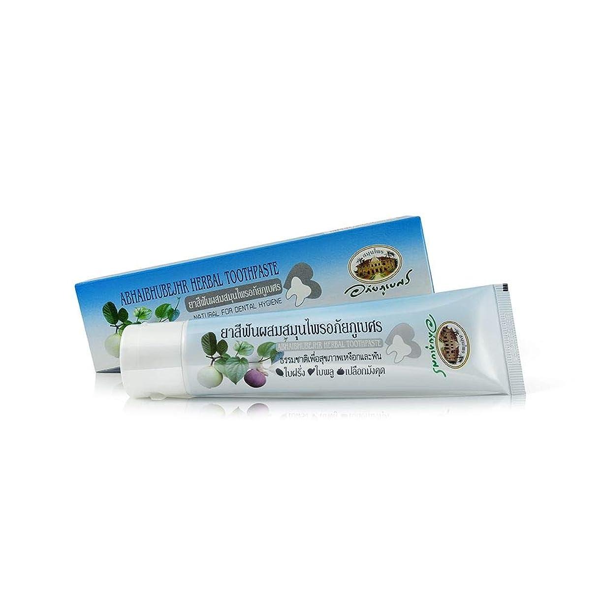 認知ゆでる荒涼としたAbhaibhubejhr Herbal Toothpaste Natural For Dental Hygiene 歯科衛生のためのAbhaibhubejhrハーブ歯磨き粉ナチュラル (70g)