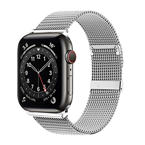 ZZLOVE AppleWatch Bands with Rugged Bumper Case Replacement (Silver, 42/44)