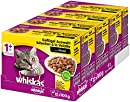 Whiskas 1 + Katzenfutter , Geflügel-Auswahl in Sauce, 48 x 100g