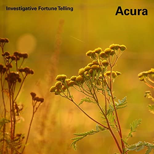Investigative Fortune Telling