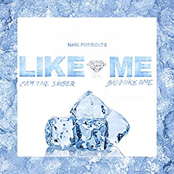 Like Me (feat. Cam the Singer)