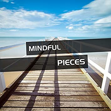Mindful Pieces of Ambient Music