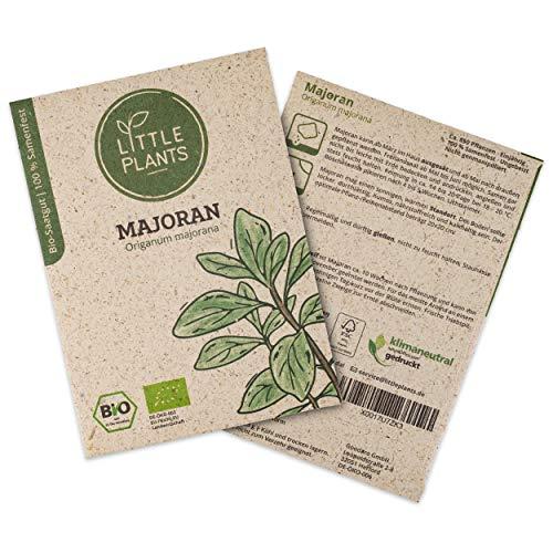 Little Plants BIO-Majoransamen (Origanum majorana) | BIO-Kräutersamen | Nachhaltige Verpackung aus Graspapier | Kräuter-Samen | BIO-Saatgut für ca. 850 Majoran-Pflanzen