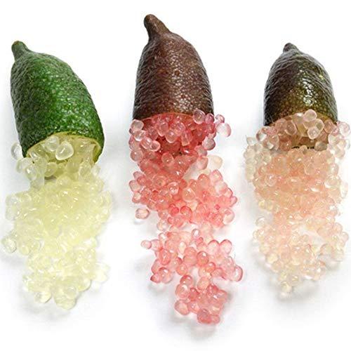 TOYHEART 50 Pezzi Semi di Frutta Premium, Semi di Agrumi Australasica Pieni di Vitamine C Nutriente Dolce E Acido Romanzo Pianta Dito Semi D'arancia per L'agricoltura Multi