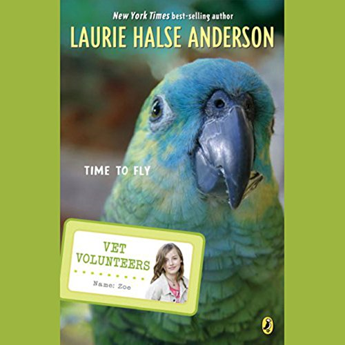 Time to Fly audiobook cover art