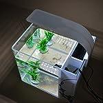 UEETEK-LED-Aquarium-Lampe-Beleuchtung-Lampe-fr-Aquarium-weies-Licht