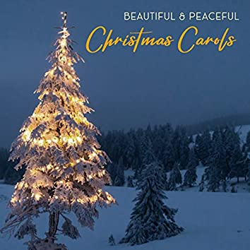 Beautiful & Peaceful Christmas Carols - Christmas Tree, Snow Winter, Happy Holidays, Christmas Night, Family Time