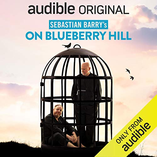 On Blueberry Hill Audiobook By Sebastian Barry cover art