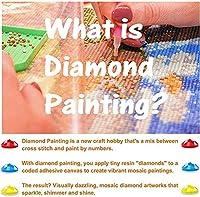 YJDFG Diy5Dダイヤモンドペインティングクラフトダイヤモンドペインティングbyナンバーキットクロスステッチキット手刺繡工芸品愛の贈り物40X50Cm