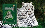 Baume du Tigre 8 patchs -
