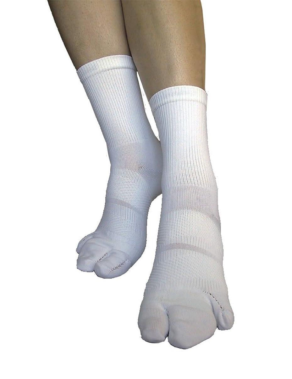鬼ごっこスタッフハンサム外反母趾対策 足首ほっそーり3本指テーピング靴下 M(22-24cm)?ホワイト