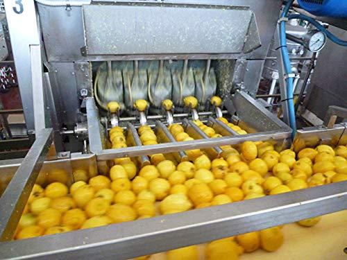 ビオカ『有機レモンストレート果汁100%』